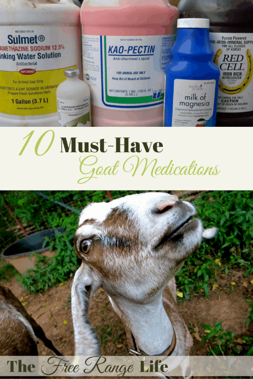 Great reference for must-have goat medications to always keep on hand.