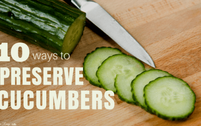 10 Delicious Ways to Preserve Cucumbers That Every Home Gardener Should Know!