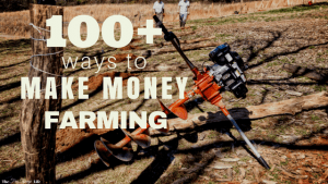 Do you want to become self sufficent and live the homestead life all while creating an income for yourself? Here are 100+ ways to make money farming just to get you started!