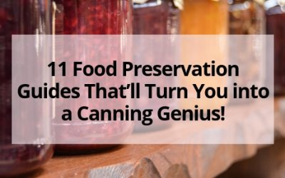 11 Food Preservation Guides That'll Turn You into a Canning Genius!