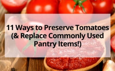 11 Ways to Preserve Tomatoes (& Replace Commonly Used Pantry Items!)