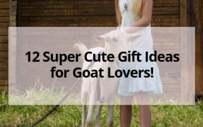 12 Super Cute Gift Ideas for Goat Lovers!