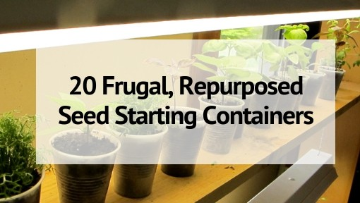 20 Frugal, Repurposed Seed Starting Containers
