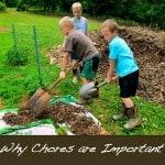 Farm Chores and their Purpose