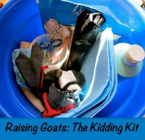kidding kit