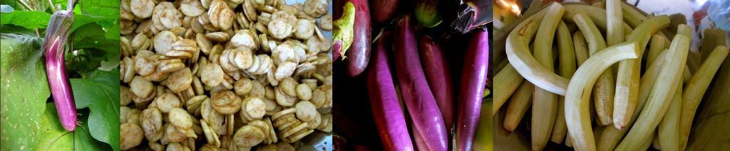 eggplant collage