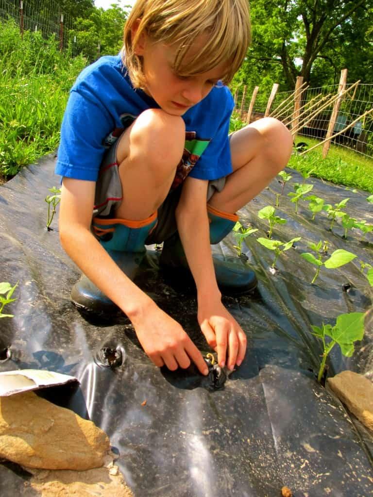 kids helping plant