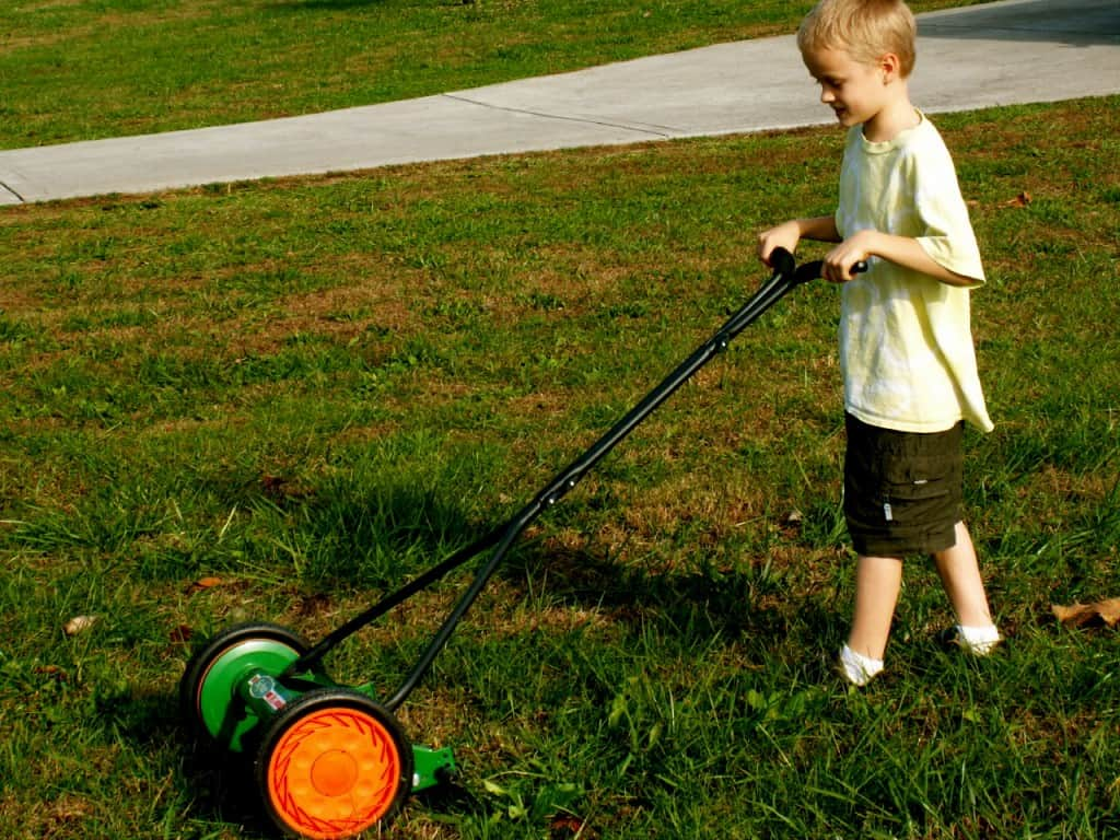 kids can help mow