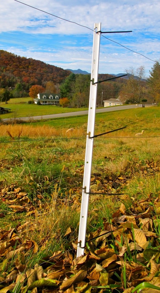 step-in fence post option