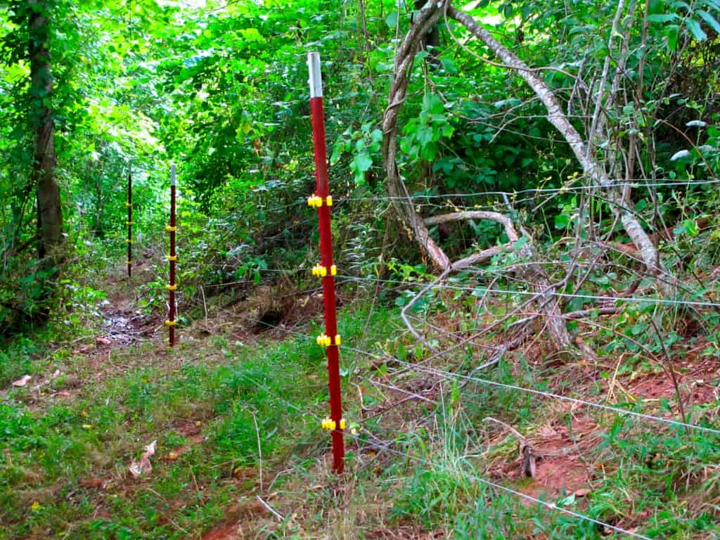 4 strand electric fencing