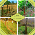 Fence Options on the Farm
