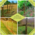 Fence Options on the Farm