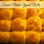 Sweet Potato Yeast Rolls