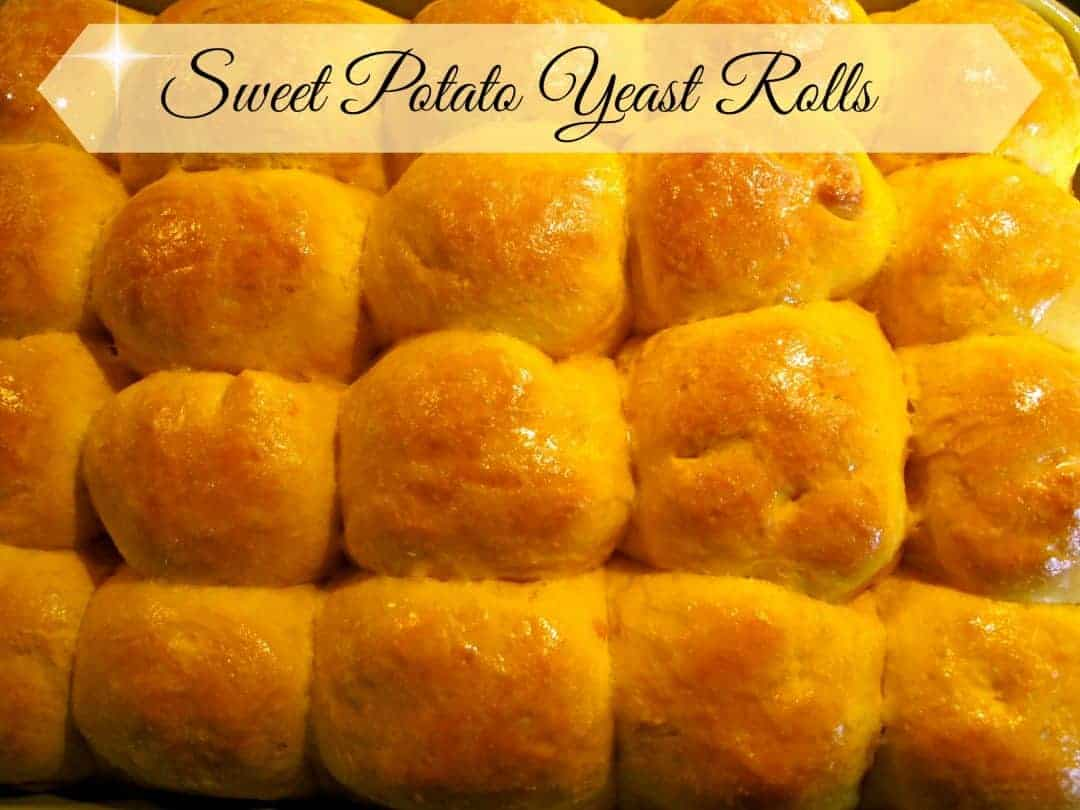 Sweet Potato Yeast Rolls - The Free Range Life