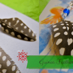 Homemade Homestead Christmas: Guinea Feather Earrings