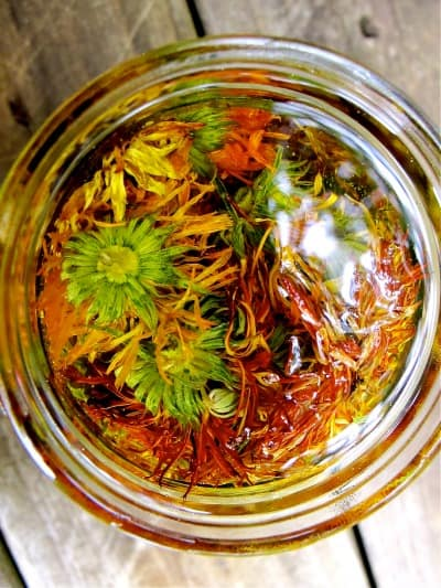 Calendula Uses and Benefits- Calendula Oil