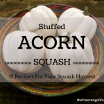 15 Stuffed Acorn Squash Recipes
