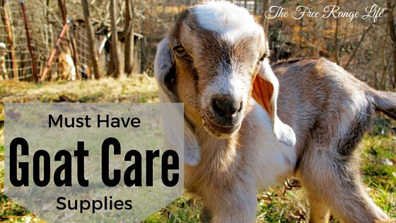 goat care supplies