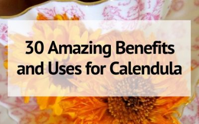 Calendula: 30 Amazing Benefits and Uses
