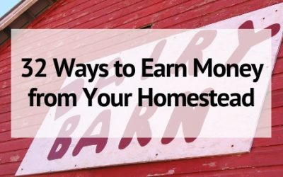 32 Ways to Earn Money from Home With Your Homestead