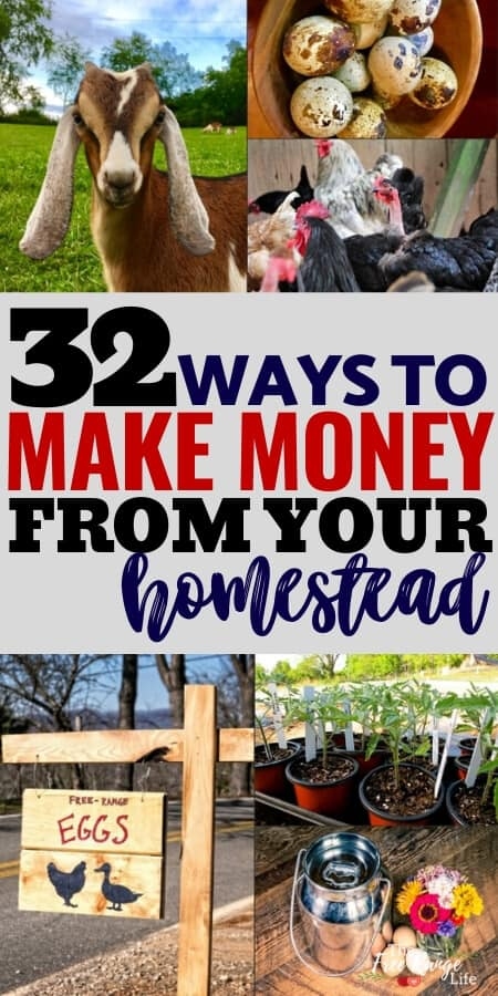 32 ways to make money from your homestead with collage of fresh eggs, goats, chickens, tomato plants, and flowers
