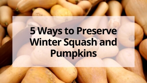 5 Ways to Preserve Winter Squash and Pumpkins