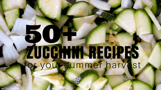 50 Zucchini Recipes For Your Summer Harvest