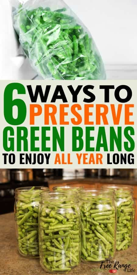 6 ways to preserve green beans to enjoy all year long