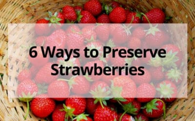 6 Ways to Preserve Strawberries