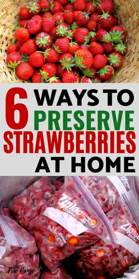 6 Ways to Preserve Strawberries at home