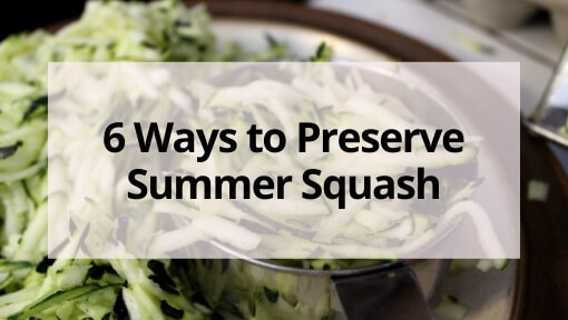 6 Ways to Preserve Summer Squash
