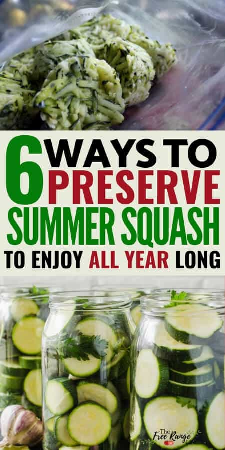 6 ways to preserve summer squash to enjoy all year long