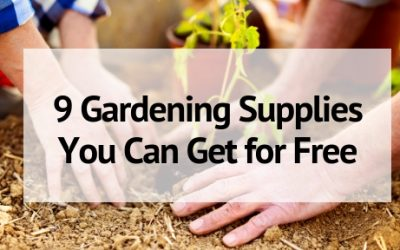 9 Gardening Supplies You Can Get for Free