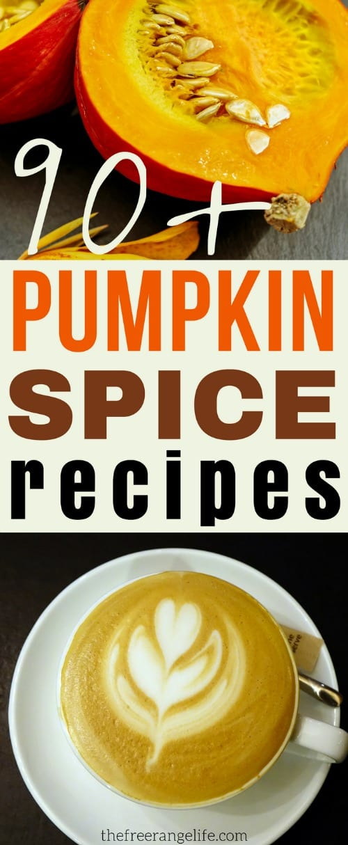 Who doesn't love everything Pumpkin Spice?! Find a new favorite with this round up of over 90 Pumpkin Spice Recipes- with something for every taste!