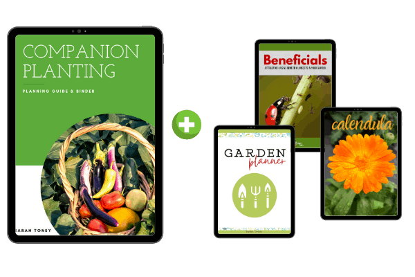 companion planting, yearly garden planner, beneficial insects guide, and calendula book covers in tablet frames