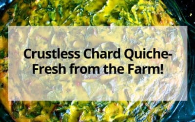 Crustless Chard Quiche- Fresh from the Farm!