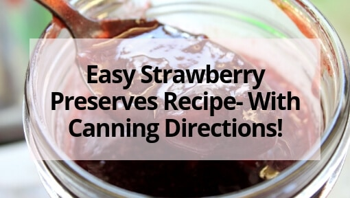 Easy Strawberry Preserves Recipe- With Canning Directions!