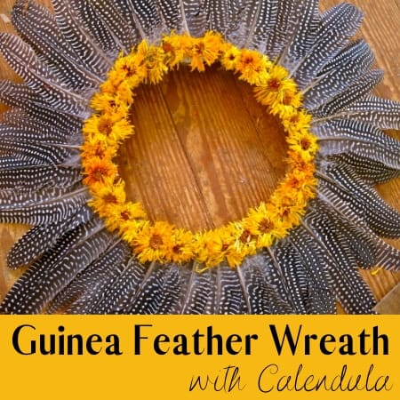 how to make a guinea feather wreath
