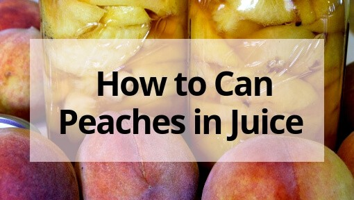 How to Can Peaches in Juice at Home