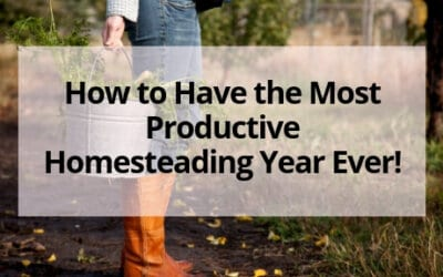 5 Tips to Planning a Productive Homesteading Year