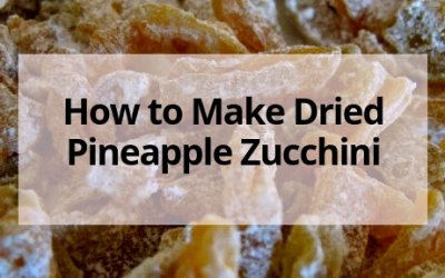 Dehydrating Zucchini- Make Pineapple Zucchini Candy!