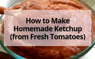 How to Make Homemade Ketchup (from Fresh Tomatoes)