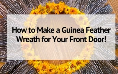 How to Make a Guinea Feather Wreath for Your Front Door!