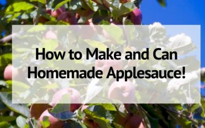How to Make and Can Homemade Applesauce!