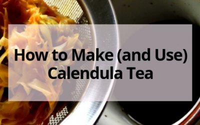 How to Make Calendula Tea- And Why You Should!