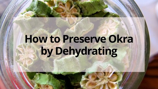 Dried Okra- How to Preserve Okra by Dehydrating