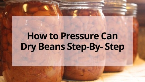 How to Pressure Can Dry Beans Step-By-Step