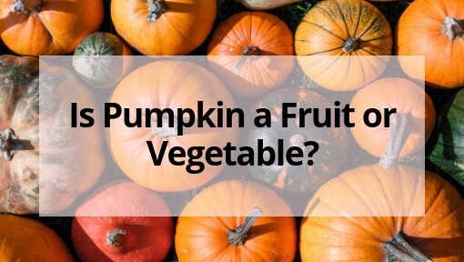 Is Pumpkin a Fruit or Vegetable? Well it Depends on Who You're Asking…