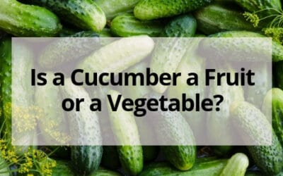 Is a Cucumber a Fruit or a Vegetable?