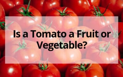 Is a Tomato a Fruit or Vegetable?